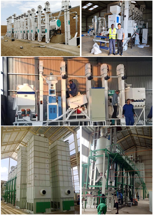rice mill installation